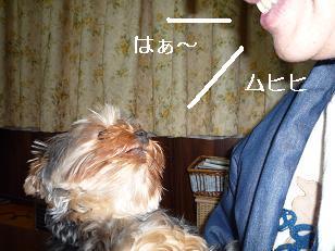 2009_0330 デジカメ写真0022