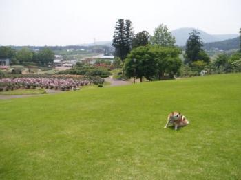 2008-5-23-3.jpg