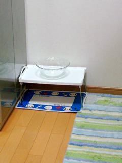 2008_07_02-01.jpg