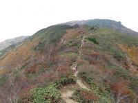 これから登る天神尾根の登山道