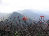 万太郎山へ