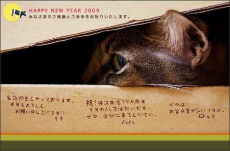 2009年 新年のご挨拶