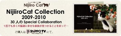 SNS『NijiiroCat』チャリティカレンダー 我が家の愛猫も参加しています
