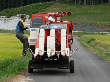 '08 稲刈り4