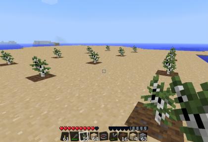 苗木植えw