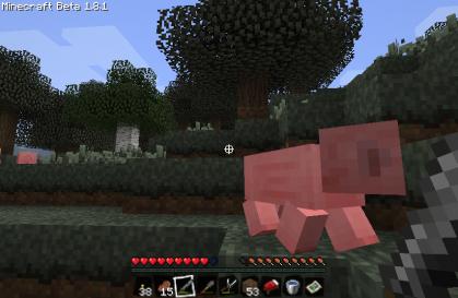 豚ちゃん!