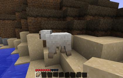 羊ちゃーん