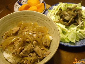 Nov28_豚丼