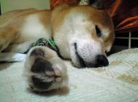 danny_kyukei3.jpg