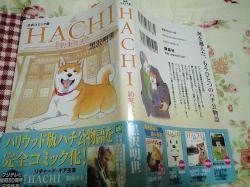 hachi_comic.jpg