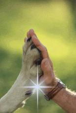 hand_n_hand.jpg