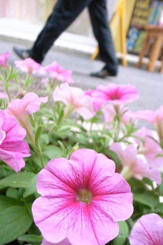 花と歩行者