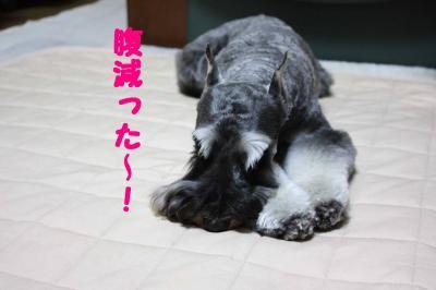 GOひと休み3-s