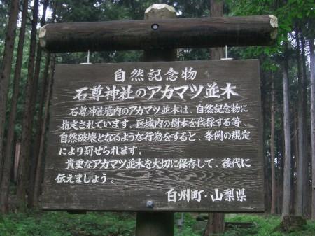 喜寿・入笠山 065