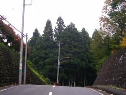 08-11-8藤野5