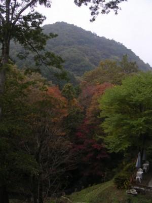 08-11-8藤野19