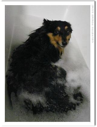 グルの入浴シーン