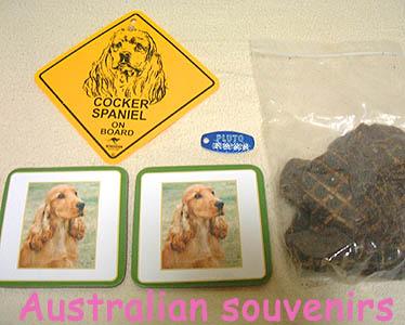 australian-souvenirs2007.jpg