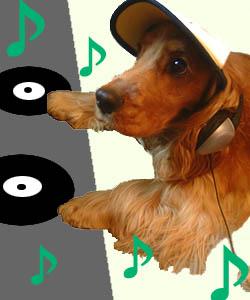 DJ POOOOOH 参上