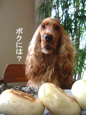 oyakimura4.jpg