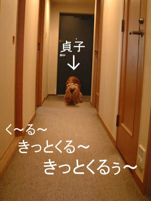 貞子がキターーー!