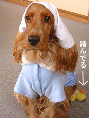 新春三角巾