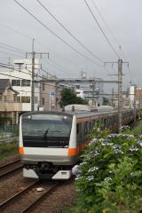DSC_4747_1.jpg