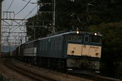 DSC_5780.jpg