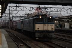 DSC_7443.jpg
