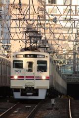DSC_8597.jpg