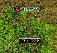 赤石1011