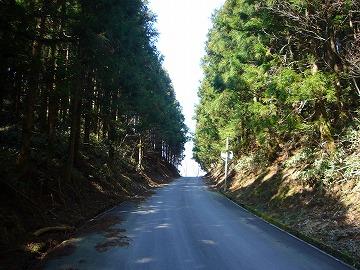 愛媛県道340号線8