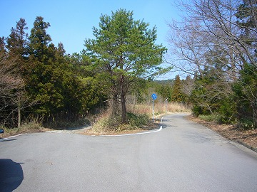 愛媛県道340号線15