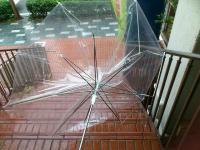日常 暴風雨 傘