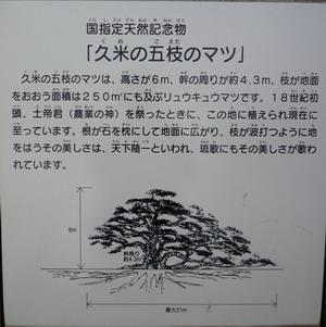2008090909.jpg