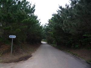 2008091001.jpg