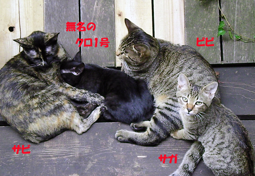 すし詰め・3