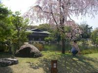 庭園IMGP1637