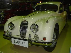 ジャガーDSC00037