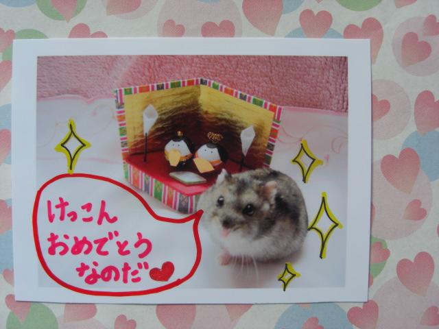 CIMG4623.jpg