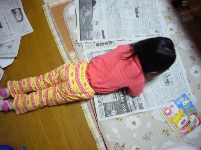 新聞を読む羽桜