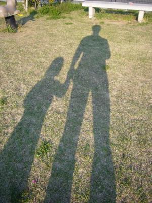 パパと羽桜の影