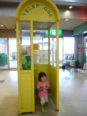 公衆電話と羽桜