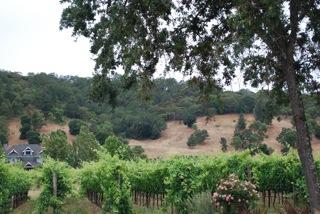 wineries1.jpg