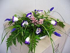 2006062209.jpg