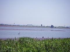 2006081001.jpg