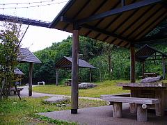 2006101153.jpg