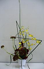 2006101629.jpg