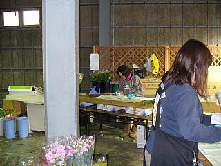 2007020508.jpg