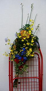 2007061209.jpg